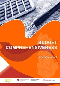 19 budget_mini